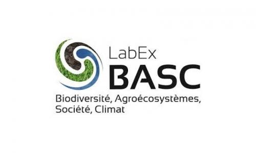 Log Basc