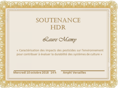 Soutenance HDR Laure Mamy