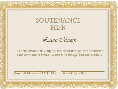 Soutenance HDR Laure Mamy