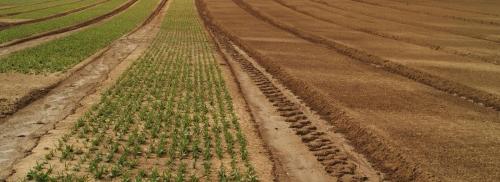 EJP Soil : Lancement du projet