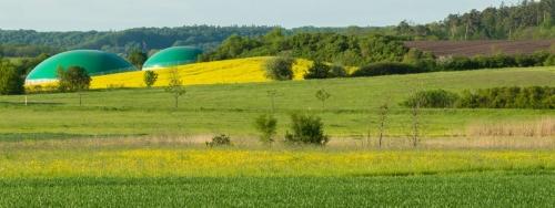 Bioénergies : quelle place pour la méthanisation ?