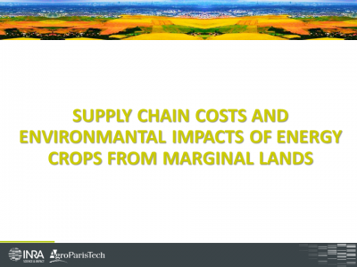 Supply Chain Costs and Environmental Impacts of Energy Crops from Marginal lands : case of miscanthus in Brittany.