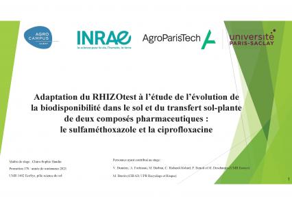 Adaptation du RHIZOtest à l'étude de l'évolution de la biodisponibilité dans le sol et du transfert sol-plante de deux composés pharmaceutiques :