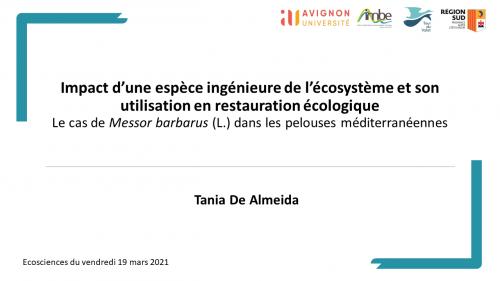 Impact d'une espèce ingénieure de l'écosystème et son utilisation en restauration écologique - Le cas de Messor barbarus (L.) dans les pelouses méditerranéennes