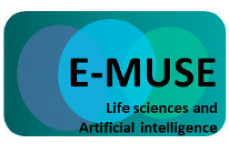 E-MUSE PhD offer