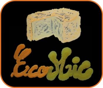 EcoMic