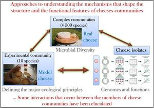 Étude intégrée écosystème fromager