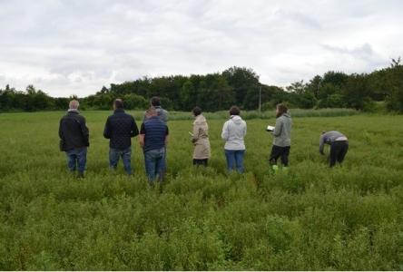Tour de plaine avec les agriculteurs. Photo Margot Leclère © INRAE