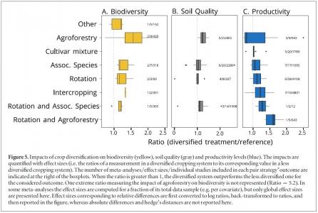 Impacts de la diversification des cultures sur la biodiversité, la qualité du sol, et les rendements