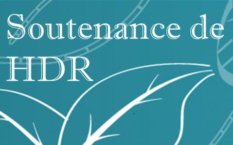 Soutenance de HDR - 4 novembre