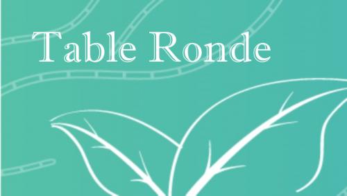 Table Ronde - 13 novembre