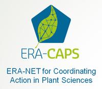 ERA-CAPS