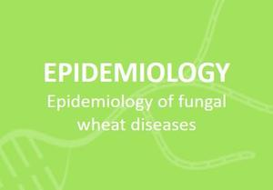 eng-Epidemiologie