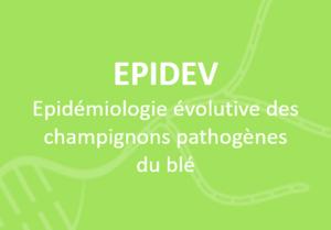 fr-epidemio