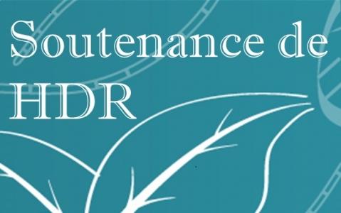 Soutenance de HDR