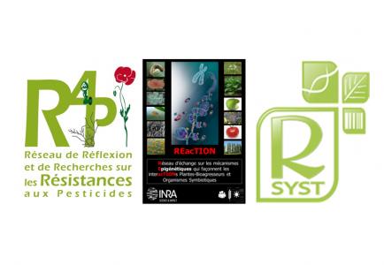 Soutien renouvellé de SPE aux réseaux R4P, REacTION et R-Syst