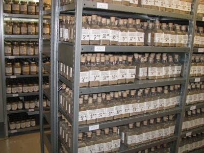 42 parcelles collection